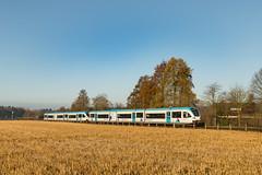 Breng 5047 en 5041 GTW 2/8 Wehl (Hans Wiskerke) Tags: wehl gelderland nederland nl