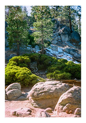 Layers (iElectronCloud) Tags: wood woods trees tree snow big bear lake hike nature outdoor rock rocks boulders cold winter forest outdoors