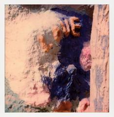 LOVE (tobysx70) Tags: polaroid originals color 600 instant film slr680 love salvation mountain imperial county california ca leonard knight folk art adobe straw paint mojave desert polaroadtrip polawalk 030718 toby hancock photography