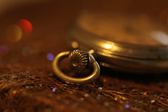 """Back In The Day"" (eleni m) Tags: macromondays hmm backintime macro pocketwatch old vintage dof bokeh back day backintheday"