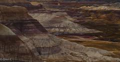 Petrified Forest National Park (nebulous 1) Tags: arizona landscape petrifiedforestnationalpark geology layers painteddesert desert rocks strata barren color colors brown red gray nikon nebulous1 glene evening
