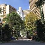 Avanhandava Boulevard, downtown São Paulo, Brazil. thumbnail