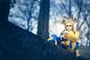 FER_0124 (FxPhoto 57) Tags: color nikon carnaval couleur convention carnival carnevale longwy d750 70200 spectacle fx fxphoto fête france f28 lorraine lumière 54 2018 évènement light venitian venise veneziano masque mask maschera meurtheetmoselle