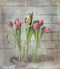 Hello Spring (Jazpix) Tags: spring tulips hyacinths whitewashedwall glassbottles meshfabric white pinkcolour color flowers indoor textures background nikcollection pse12