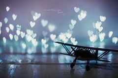 Always follow your heart (pierfrancescacasadio) Tags: marzo2018 20032018840a55582 heartbokeh comeflywithme bokeh 50mm followyourheart heart diy moody fly