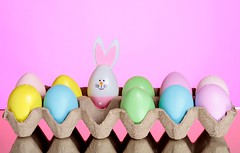 Bunny Surprise (Karen_Chappell) Tags: bunny rabbit egg easter holiday pastel carton pink blue yellow green multicoloured happyeaster stilllife eggs spring