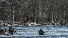 Fiske i Emån (tonyguest) Tags: emån fiske fishing snow snö ice e22 tonyguest stockholm sverige sweden river trees