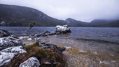 Dove Lake (R. Francis) Tags: dovelake cradlemountain cradlemountainnationalpark lake fpg cloud ryanfrancis ryanfrancisphotography tasmania tasmanianhighlands