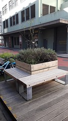 Bench on Bond Street in Wellington (2) (4nitsirk) Tags: bench wellington