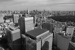 Shinjuku towards Yoyogi (tokyobogue) Tags: tokyo japan shinjuku nikon nikond7100 d7100 sigma sigma1750mmexdcoshsm blackandwhite blackwhite monochrome tokyometropolitangovernmentbuilding city cityscape view