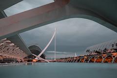 City of Art and Science (soomness) Tags: architecture design geometry vacation travel travelphotography valencia spain españa architechture fujifilmxt2 fujifilm fujinon fuji xt2 xseries xf16mmf14wr art artistic arts