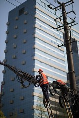 20180401-BX6I8607 (mika #) Tags: china shanghai shanghaishi cn canon 1dxmarkii 85mm f12 urban worker electricity building scale bamboo blue helmet wires