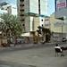 streets of Dakar 2