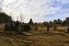 1st Armored Brigade (flarekiss photo) Tags: milad military 군스타그램 밀리터리