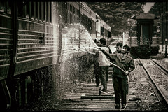 In Sprays of Trains (Carl's Captures) Tags: chiangmaistation chiangmairailwaystation cleaning washing water hoses spraying maintenance crew workers splash splashing carriages coaches chiangmaithailand northernthailand southeastasia asian thai siam srt staterailwayofthailand transportation railroadtracks sepia monochrome story pressurespray wash droplets mist candid action streetphotography streetshooting rinsing backlight hydro highpressure facialexpressions nikond5100 tamron18270 photoshopbyfehlfarben thanksbinexo