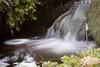 Spring in the forest, Norway (KronaPhoto) Tags: 2018 natur vår longexposure motion bevegelse water slow melting bekk stream forest skog nature river elv dof macro