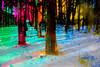 20180304-149 (sulamith.sallmann) Tags: landschaft wetter analogeffekt blur bunt bäume colorful effect effects effekt filter folie folientechnik forest landscape miriquidi natur nature schnee snow trees unscharf wald weather winter sulamithsallmann