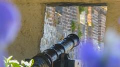 Kanone (krieger_horst) Tags: kanalinseln bokeh guernsey kanone stpeterport