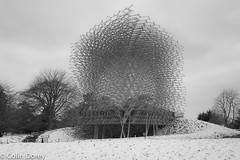 The Hive-19032018-19.jpg (Colin Dorey) Tags: hive thehive structure building kew kewgardens bw monochrome blackwhite blackandwhite tree botanic gardens richmond surrey uk london park garden snow march 2018 architecture