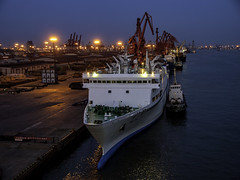 Tiānjīn Xīngǎng (new port) (Tony Tomlin) Tags: cruiseship tianjin xingang china aisa