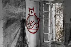 Sanatorium Nestor Pirotte-346 (yolandeschmitt1) Tags: