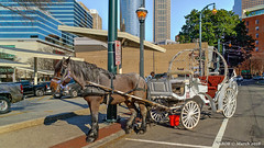 Atlanta, GA: Alternative tourist transportation at Centennial Olympic Park (nabobswims) Tags: atlanta centennialolympicpark ga georgia hdr highdynamicrange ilce6000 lightroom nabob nabobswims photomatix sel18105g sonya6000 us unitedstates