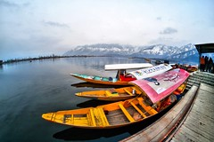 Dal Lake - A Winter Landscape (Photo Paint) (pallab seth) Tags: dallake lake kashmir srinagar india nature winter cold landscape boat fishermen charchinar charchinari ropalank rupalank vehicle travel adventure tour tourism boatman fisherman shikara photopaint painting topaz photopainting corelpaintshopprox6ultimate natureforwater worldwaterday