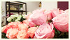 Blumenart, Taborstrasse | 2018-03 (Brigitte Rieser) Tags: blumengeschäft blumenart florist floristik mansour 1020 wien vienna frühling spring rosa taborstrasse
