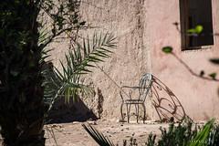 Vallee du Draa © Sophie Bigo - SBGD 2018-10 (SBGD_SophieBigo) Tags: photography artdirector freelance sophiebigo maroc trip travelphotography traveler trek morocco light
