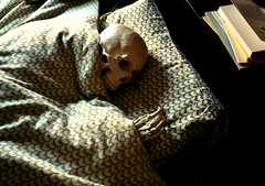 St'influenza m'ha steso... (Colombaie) Tags: casa humor teschio cranio ossa plastica mano falangi cuscino letto influenza ridere autoironia malattia io life skeleton bed