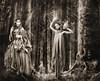 A Walk in the Woods Beckoned (ozoni11) Tags: fae faerie faeries magic magical whimsy whimsical fairy fairies baltimore nikon ozoni11 michaeloberman maryland