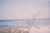 冬と海 (あおい.) Tags: japan nature winter sea sky film pentaxsp 日本 自然 冬 海 空