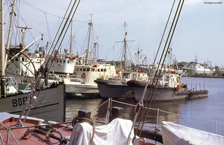 Le port de Gdynia