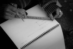 01/30.  Planning the plot. (Spleencheesemonkey) Tags: planning gardening vedge runnerfuckinbeans organised