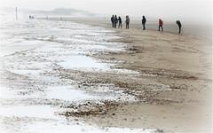 Dunes, plage et la mer du Nord, De Banjaard, Kamperland, Noord-Beveland, Zeelande, Nederland (claude lina) Tags: claudelina nederland hollande paysbas zeeland debanjaard plage dune merdunord noordzee zeelande