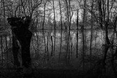 Inondation.jpg (BoCat31) Tags: eau paysage nb inondation marais poitevin