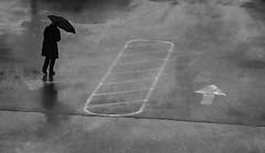 umbrella (Bo Dudas) Tags: rain bw blackwhite composition reflection silhouette noir street