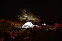 Time to turn off the lights (Ran Z) Tags: ranzisovitch nikond800e irix11mmf4 longexposure night tent tree desert israel eilat scenery beautiful
