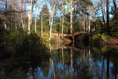The Crim Dell (bougnol.pierre) Tags: lake williamandmary college virginia colonial williamsburg bridge reflections forest sky tree ngc
