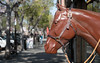 Freed From The Carousel, Living On The Streets (pmkelly) Tags: california horse livermore plastic statue