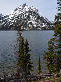 Teton - Majestic Range