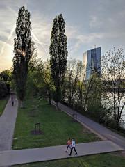 Frankfurt European Central Bank (Aviller71) Tags: frankfurt architecture architektur germany deutschland europeancentralbank ecb ezb