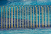 Fence in a swimming pool (Jan van der Wolf) Tags: map182260v fence hek hekwerk rvs roestvrijstaal stainlesssteel swimmingpool zwembad water blue blauw