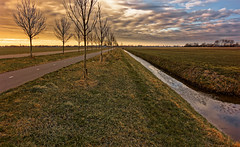 A Long Cycle Along (Alfred Grupstra) Tags: nature ruralscene grass farm agriculture landscape outdoors field sky season sunset tree scenics meadow summer netherlands nonurbanscene road springtime land 985