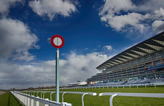 The Finishing Post (ctrolleneos) Tags: ascot ascotracecourse 1018 80d canon affinityphoto