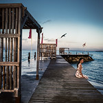 Creative Commons - guadeloupe woman on a boardwalk thumbnail