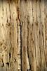 Vieille porte en bois (casterapaul) Tags: nikon d60 bois abstrait porte door ancien