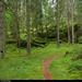 20170808_1 The Bohusleden trail, section 11 - Hasteröd to Vassbovik   Bohuslän, Sweden