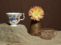 untitled (N.the.Kudzu) Tags: tabletop stilllife cup flower cubist glass sugar bowl canondslr primelens russianlens manualfocus