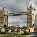 Sheep Grazing at the Tower Bridge London! thumbnail